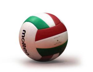 pallone-pallavolo_web