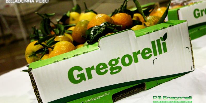 Gregorelli 15