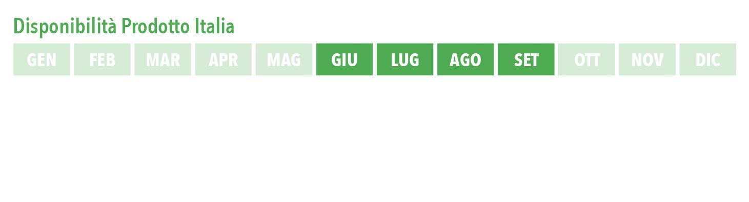 giug_sett