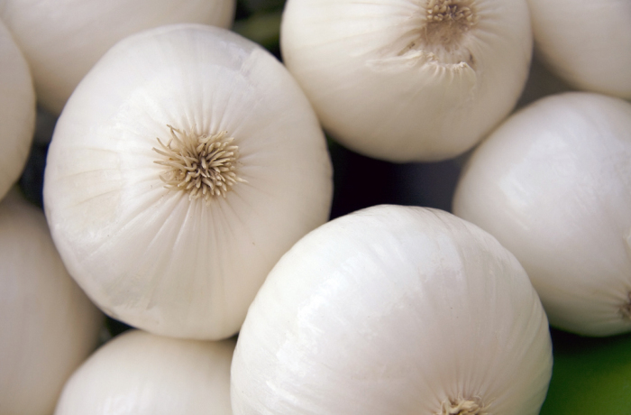 Cipolla bianca